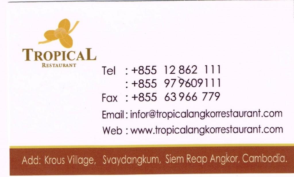 151218 トロピカル